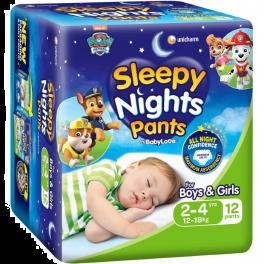 BabyLove Sleepy Nights 2-4yo 3x12's